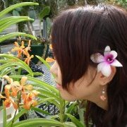 新婚旅行先のハワイで