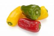 野菜de健康生活
